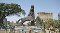 Addis Ababa City Tour by Car