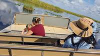 1-Hour Airboat Ride and Nature Walk with Naturalist in Everglades National Park