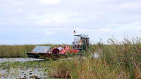 Airboat Ride and Everglades Nature Walk with a Naturalist