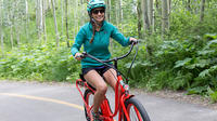Electric Bike to BBQ Tour on the Virginia Capital Trail