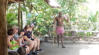 Shore Excursion: Full-Day Efate Island Tour