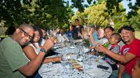 Half-Day Wine Sampler Group Tour from Franschhoek