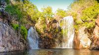 Litchfield National Park Waterfalls Day Trip From Darwin Including Termite Mounds and Lunch image 1