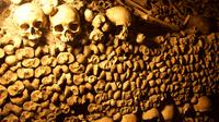 Semi-Private Catacombs of Paris Restricted Access Tour