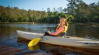 Walkabout Creek Adventures Kayak Hire
