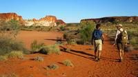Half-Day Rainbow Valley Sunset Tour from Alice Springs