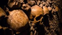 Catacombs Guided Tour - Skip the Line access