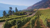 Beat the Bottleneck: Summerland Full-Day Wine Tour