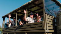 The Darwin History and Wartime Experience - Half day tour