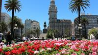Half-Day Shared Walking City Tour of Montevideo