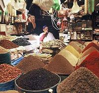 Marrakech Full-Immersion Day Tour with Lunch