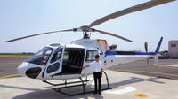 Tokyo Sky: Private Helicopter Tour (30min)