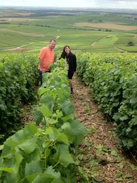 Champagne Tour from Paris: Moet and Chandon, Hautvillers and the House of Mumm