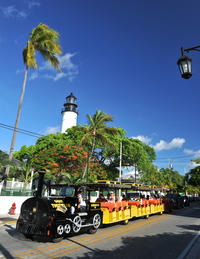Key West Shore Excursion: Conch Tour Train