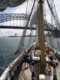 Sydney Harbour Boxing Day Cruise with Seafood BBQ Lunch