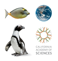Skip the Line: California Academy of Sciences General Admission Ticket