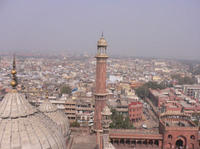 Old Delhi Half Day Small Group Tour