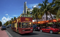 Miami Hop-On Hop-Off Tour with Optional Biscayne Bay Cruise Picture