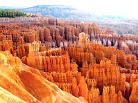 Bryce Canyon National Park Small-Group Tour from Las Vegas