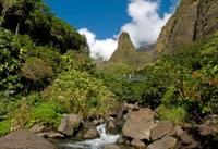 Kahului Shore Excursion: Maui Tropical Plantation and Iao Valley Tour with Optional Maui Ocean Center
