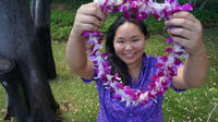 Traditional Airport Lei Greeting in Honolulu Oahu Private Car Transfers