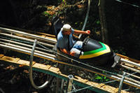 Jamaica Bobsledding Tour from Montego Bay