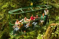 St Lucia Aerial Tram and Rainforest Tour