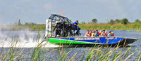 Picture of Florida Everglades Airboat Adventure and Wildlife Encounter Ticket