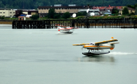 Ketchikan Shore Excursion: 30 Minute Seaplane Spectacular Tour