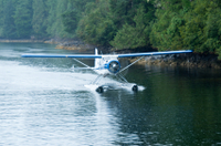 Ketchikan Shore Excursion: 90-Minute Fjords National Monument Seaplane Tour