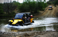 Picture of Sonoran Desert Tomcar Tour