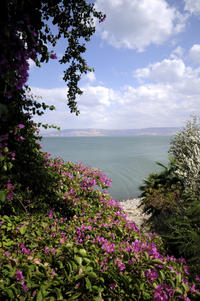 2-Day Israel Tour from Tel Aviv: Acre, Caesarea, Nazareth and the Sea of Galilee