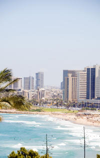 Tel Aviv Private Transfer: Central Tel Aviv to Ashdod Port