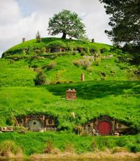 Private Tour: The Lord of the Rings Hobbiton Movie Set Tour from Auckland