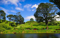 Waitomo Caves and The Lord of the Rings Hobbiton Movie Set Tour from Auckland with Private Transport, Auckland CBD Tours and Sightseeing