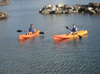 Picture of St Kitts Kayak and Snorkel Adventure