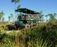 Eco-Safari at Forever Florida