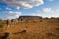 Mount Connor 4WD Small Group Tour from Ayers Rock