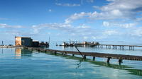 Full Day Guided Abrolhos Fly and Flipper Tour from Geraldton image 1