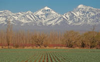 Mendoza City Tour image 1