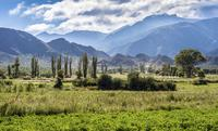 Salta Super Saver: Best of Calchaquí Valley Including Cachi and Cafayate Winery Day Trips image 1