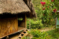 Extended Tours from Iquitos