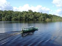 3-Day Iquitos Jungle Adventure at Muyuna Lodge