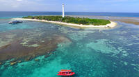 Amedee Island and Outer Reef Half-Day Private Water Taxi Tour from Noumea