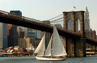 Champagne Brunch Sail in New York City Picture