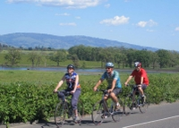 Picture of Wine Country Adventure: Bike and Kayak Wine Tour