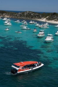 Full-day Rottnest Island Tour including Wildlife Cruise