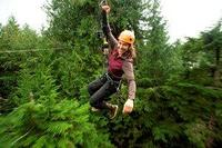 Picture of Ketchikan Shore Excursion: Rainforest Canopy Ropes and Zipline Park