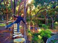 Enchanted Adventure Garden Canopy Tour and Mornington Peninsula from Melbourne