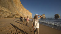 Luxury Great Ocean Road and 12 Apostles Day Trip